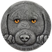 Republic of Cameroon YEAR OF THE DOG LUNAR 3000 Francs Silver coin High relief 2018 Antique finish 3 oz